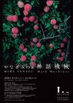 yanagimiwa-1.jpg